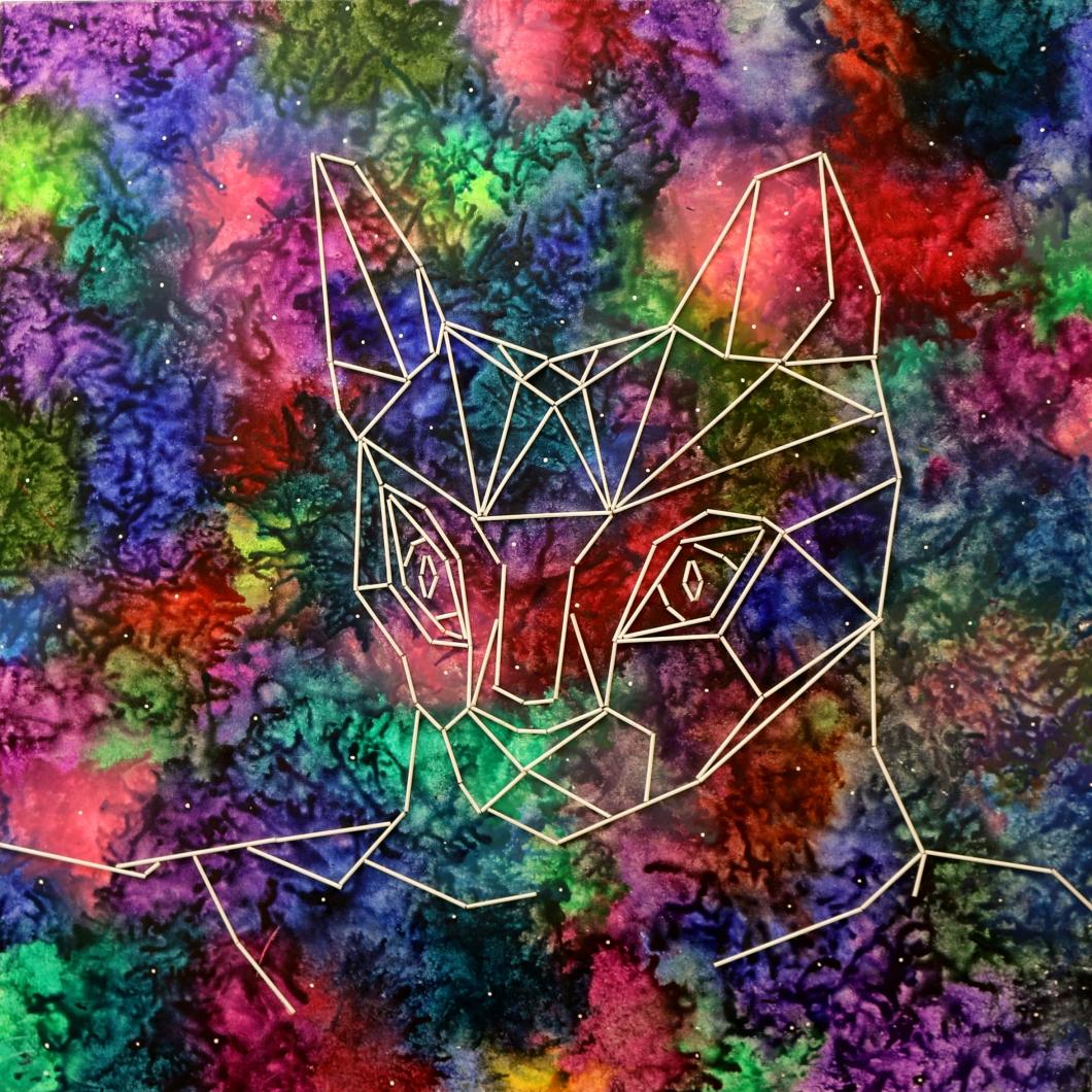 sw-12-catstellation-2